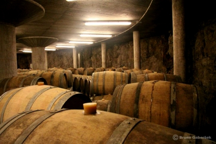 Kante wine cellar. Photo by Bruno Gaberšek