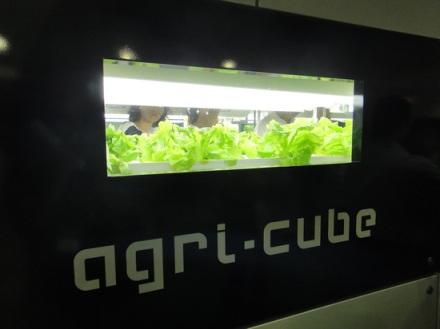 agri-cube-2-thumb-550x412